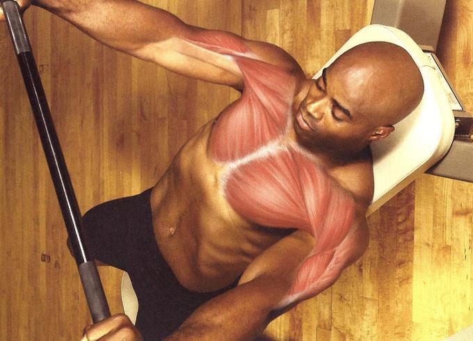 Erros nos exercícios para peito - HQSC