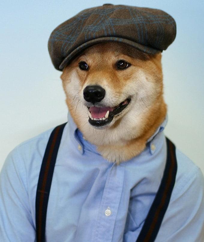 MenswearDog - Cachorro que dá dicas de moda - HQSC 1