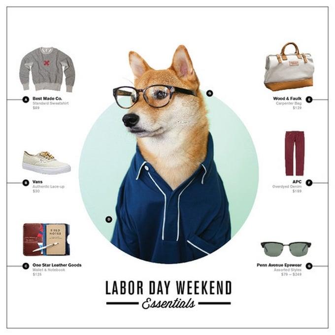 MenswearDog - Cachorro que dá dicas de moda - HQSC