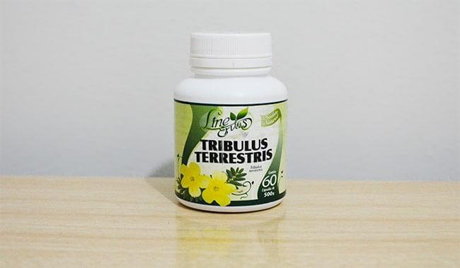 Tribulus Terrestris HQSC 1